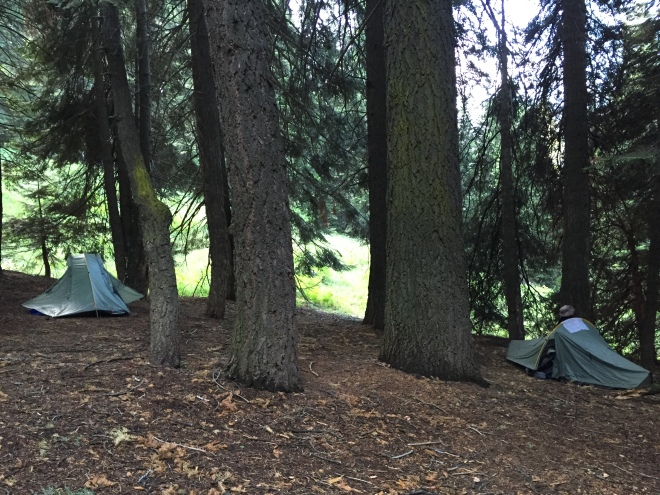 Our campsite, Bearpaw Meadow.